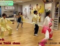 《32式太極拳》 32 forms Taichi Chuan